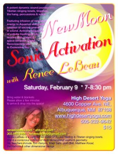2-9 NewMoon Sonic Activation